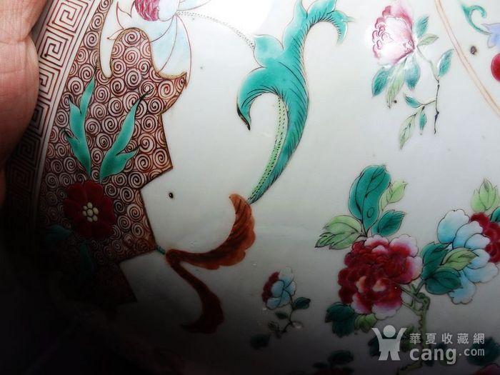 雍正大号粉彩花卉绘画卷缸图5