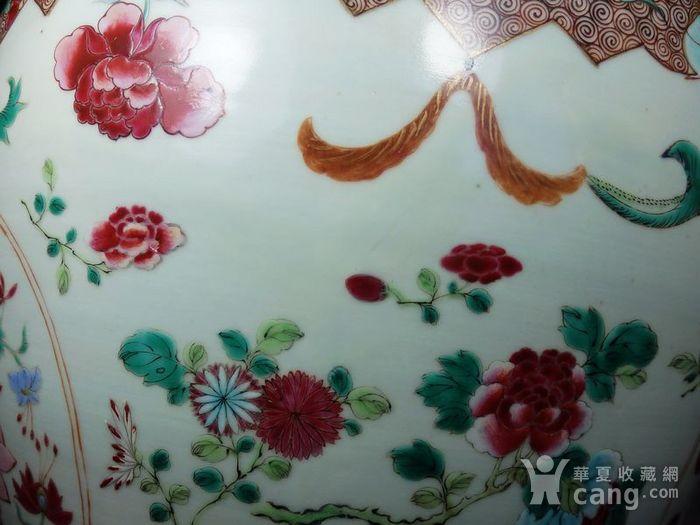 雍正大号粉彩花卉绘画卷缸图7