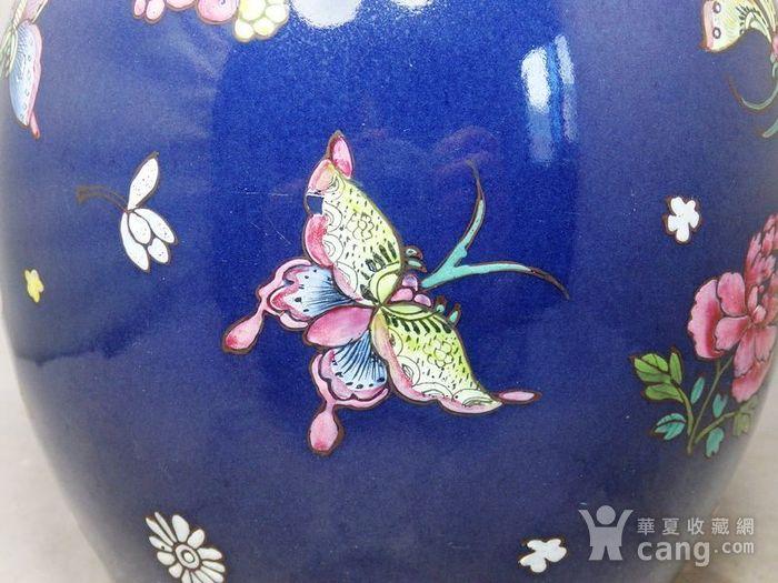 乾隆蓝釉加彩蝴蝶绘画罐图4