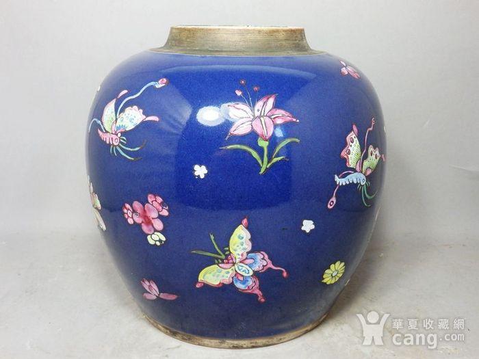 乾隆蓝釉加彩蝴蝶绘画罐图2