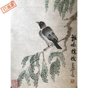 国礼艺术家黄常五作品《斑鸠楼槐》