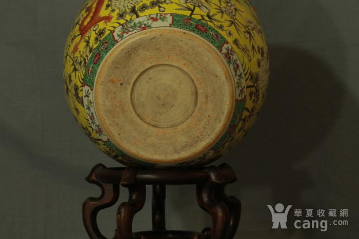 清大雅斋风格黄地粉彩龙纹大画缸 带老红木底座图8