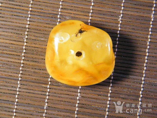 波罗的海天然老蜜蜡原石.饼子10.6克图1
