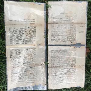 清代 殿试卷抄卷
