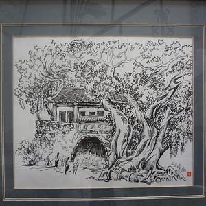 山夫速写榕树林荫图