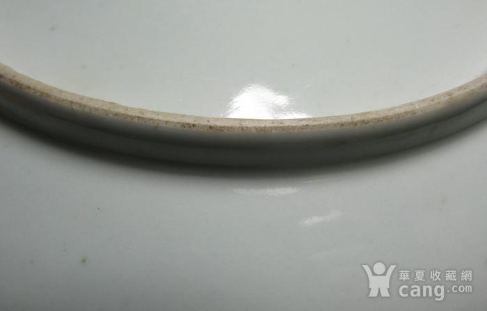 创汇期粉彩秋虫花草盘图8