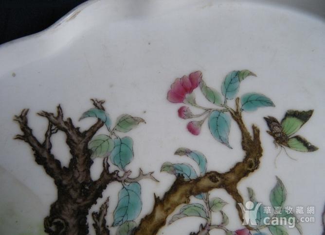 细路粉彩猫蝶纹海棠形盘图5