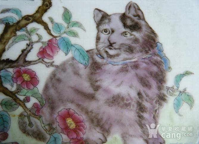 细路粉彩猫蝶纹海棠形盘图3