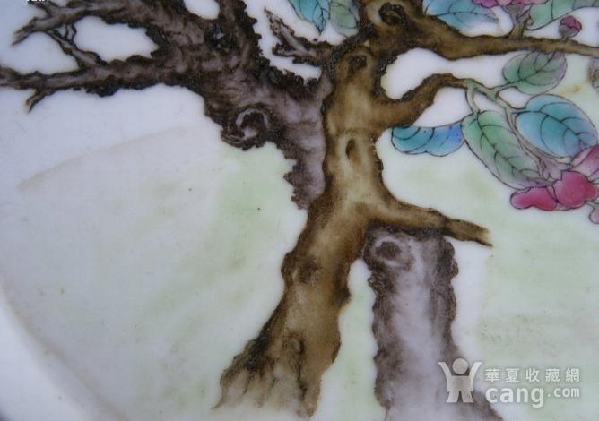 细路粉彩猫蝶纹海棠形盘图4