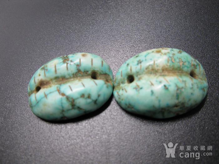 天然老松石贝币图5