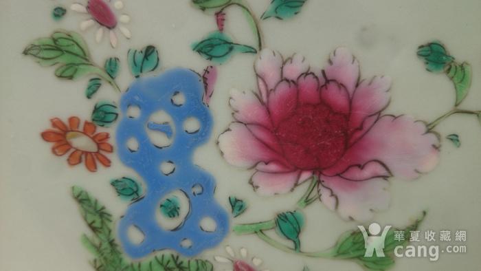清雍正粉彩花卉牡丹纹葵口盘直径22.7公分包真图3