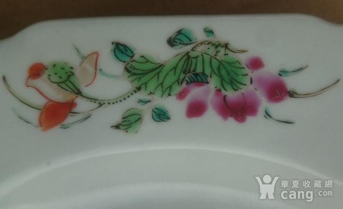 清雍正粉彩花卉牡丹纹葵口盘直径22.7公分包真图5
