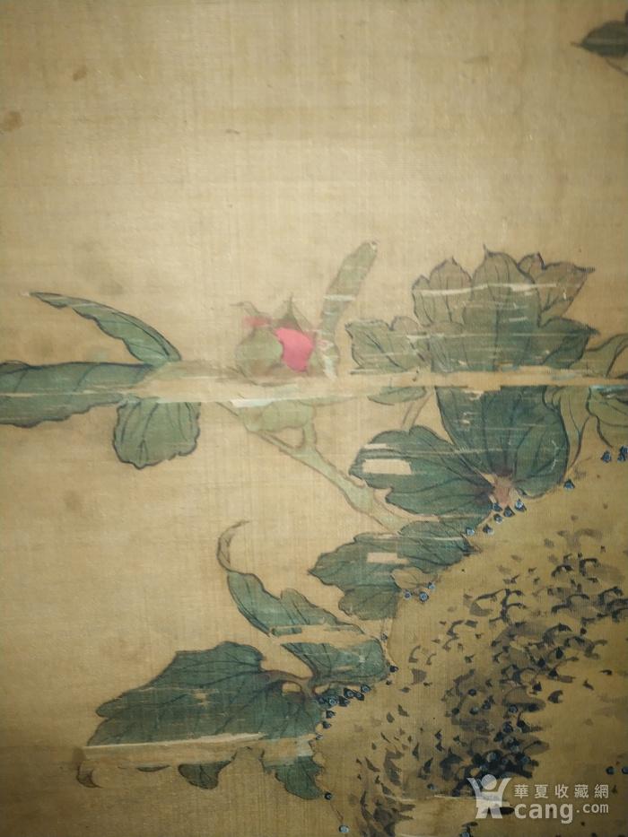 回流的瑞典回流的清代乾隆年间的绢本老画名家款图10