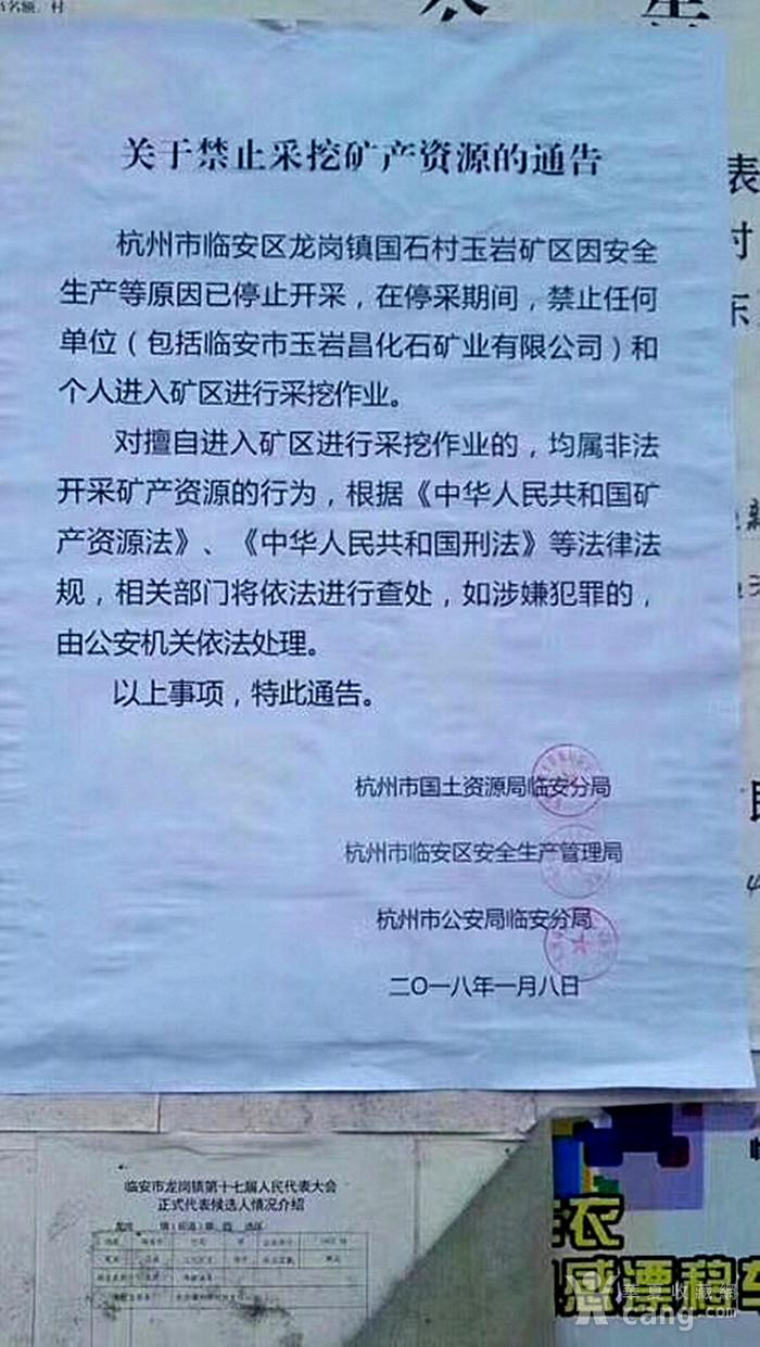 狂欢放漏 昌化三彩蚌花冻石印章图9
