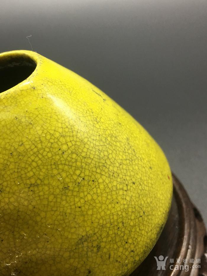 清晚期黄釉水盂图4
