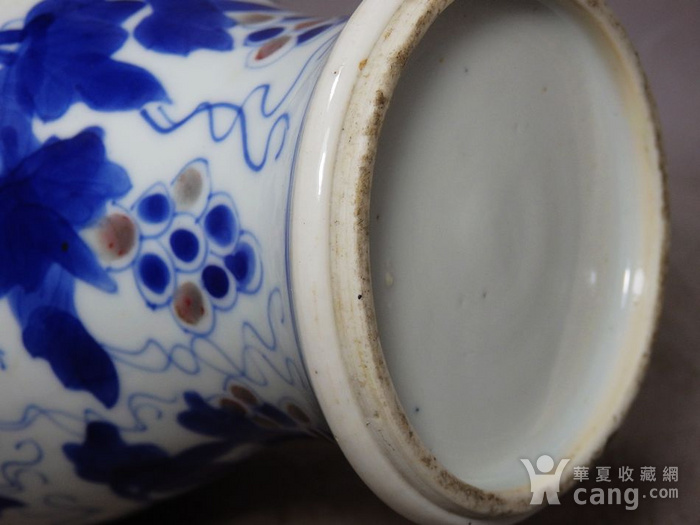 康熙青花釉里红葡萄绘画梅瓶图8