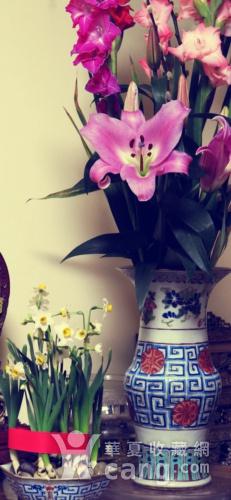 清代40cm同治饕餮回纹粉彩大花觚图1