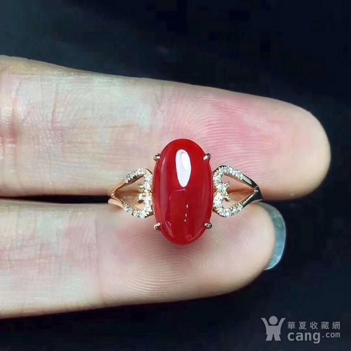 天然红珊瑚戒指假一赔万图1