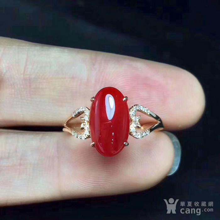 天然红珊瑚戒指假一赔万图4