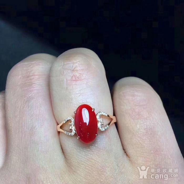 天然红珊瑚戒指假一赔万图5