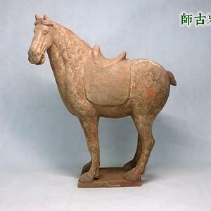 唐 红陶白衣低头马