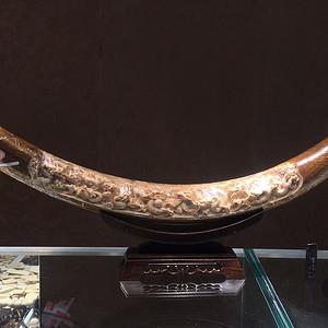 联盟 冰河时代化石系列证根雕 九龙