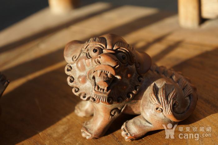 回流光绪年间黄杨木雕巧雕狮子一对图4