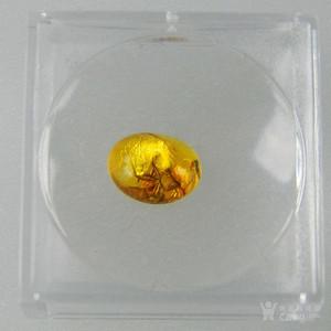 金牌 波罗的海 琥珀原石昆虫标本付放大镜外盒2 人气欧洲蜜蜡琥珀