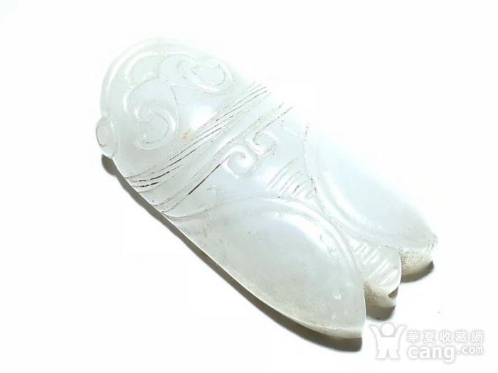 明 和田白玉籽料 一级羊脂白 知了 挂件 手工雕刻 工艺精美 细节拿捏图1