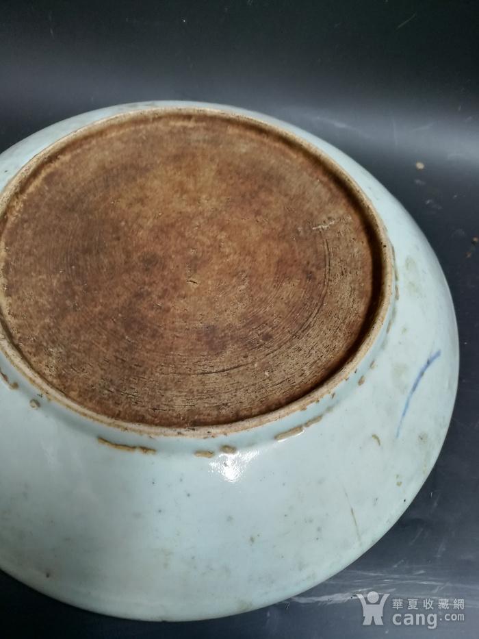 青花鱼盘子图3
