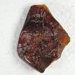 波罗的海天然老蜜蜡原石11.6克