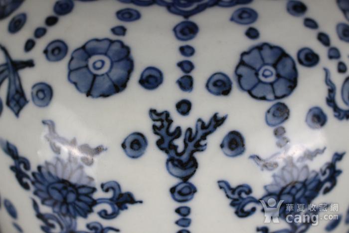 欧亚回流青花璎珞海马纹罐图6