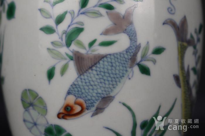 欧亚回流斗彩玉藻纹罐图6