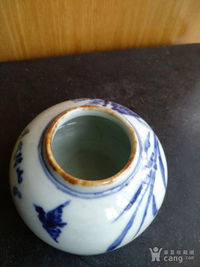 文房佳器。清晚 民国马蹄型青花水盂,高:4Cm,底径6.8Cm。图5
