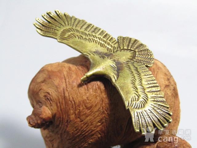 回流 老铜打造 雄鹰展翅 包浆厚重图5