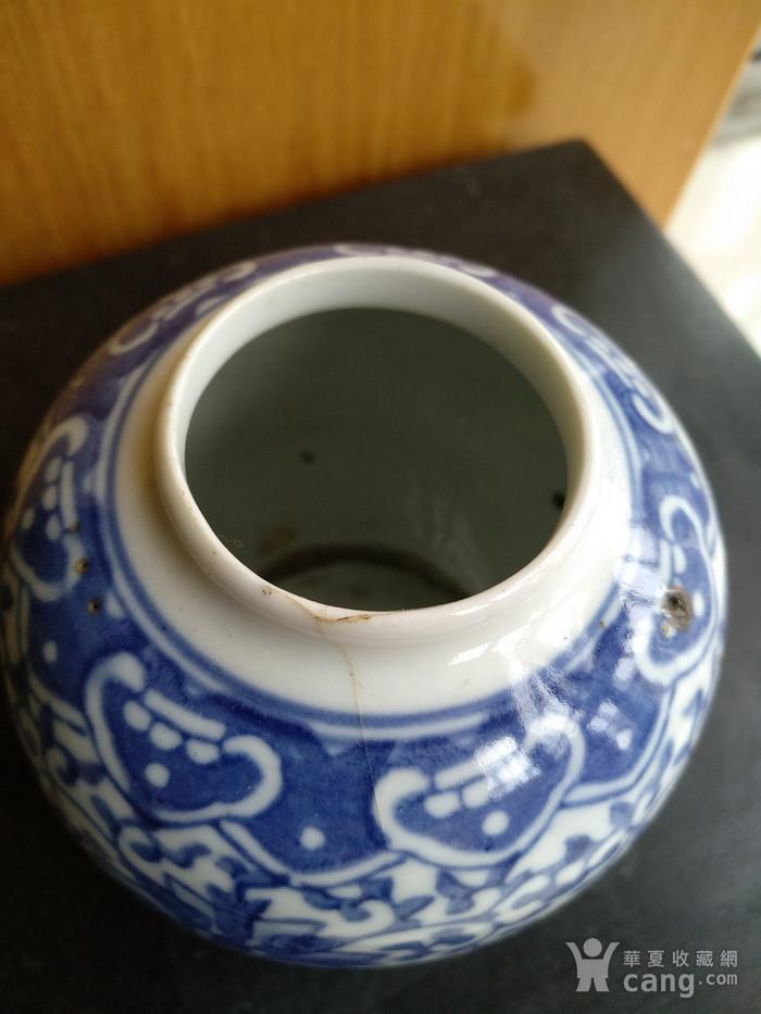 清代青花水盂,高:8.5Cm文房佳器。图5