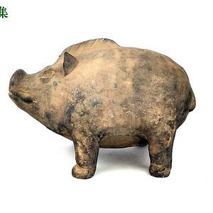 春秋 灰陶猪