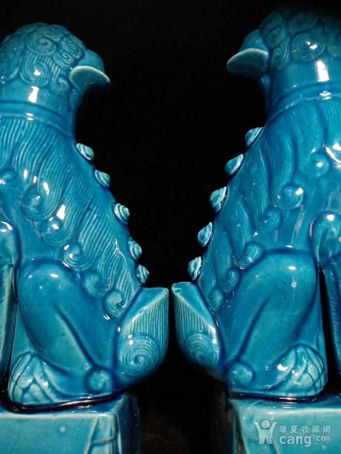 一对孔雀蓝狮子之一图2