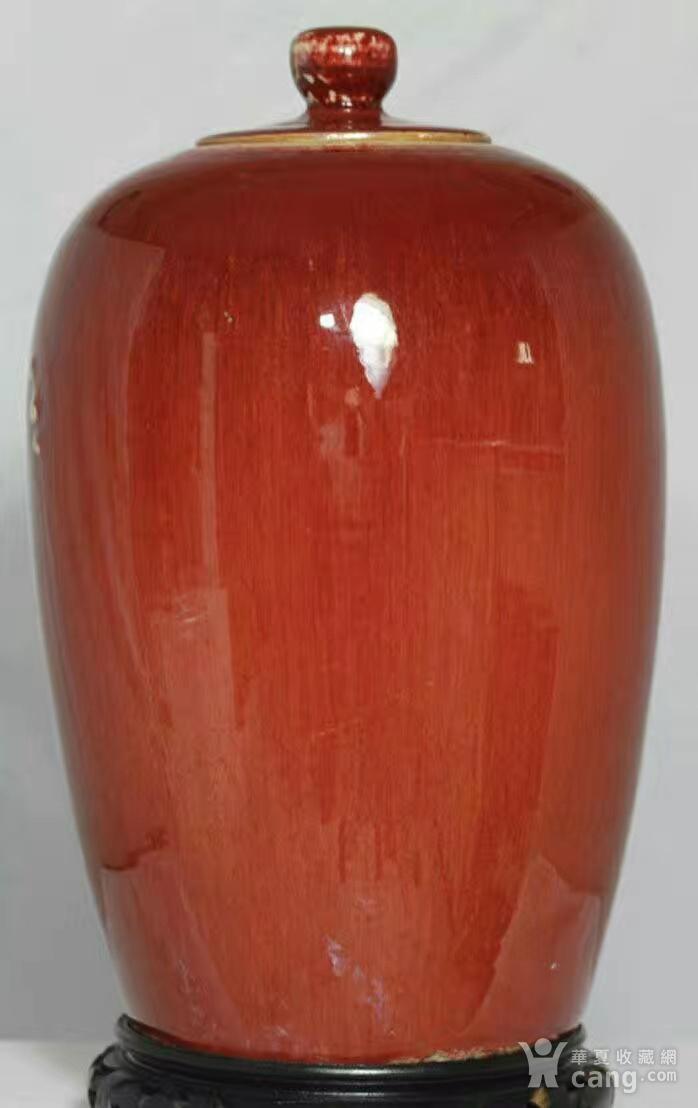 一个郎红罐图4