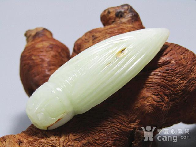 晚清和田白玉籽料 蝉挂件 玉质及其熟润 包浆老厚图4