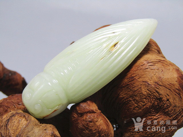 晚清和田白玉籽料 蝉挂件 玉质及其熟润 包浆老厚图1