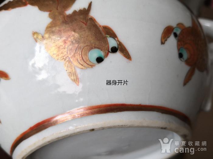 清民广彩金鱼纹执壶全品包真包老图9