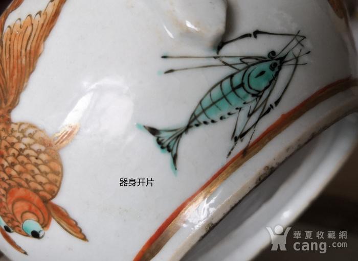 清民广彩金鱼纹执壶全品包真包老图11