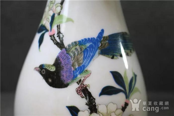 英国回流的醴陵瓷锦鸡富贵图花瓶一对图4