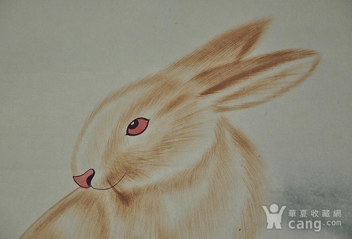 李奎龄作品  兔子图6