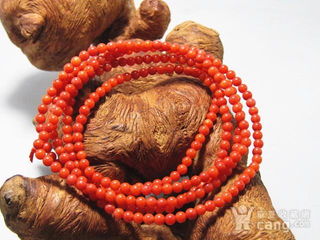 红珊瑚 手串 216粒图2