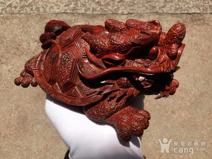 联盟 精品印度小叶紫檀 龙龟 摆件图3