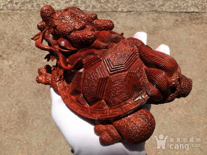 联盟 精品印度小叶紫檀 龙龟 摆件图5