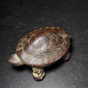 紫砂小乌龟
