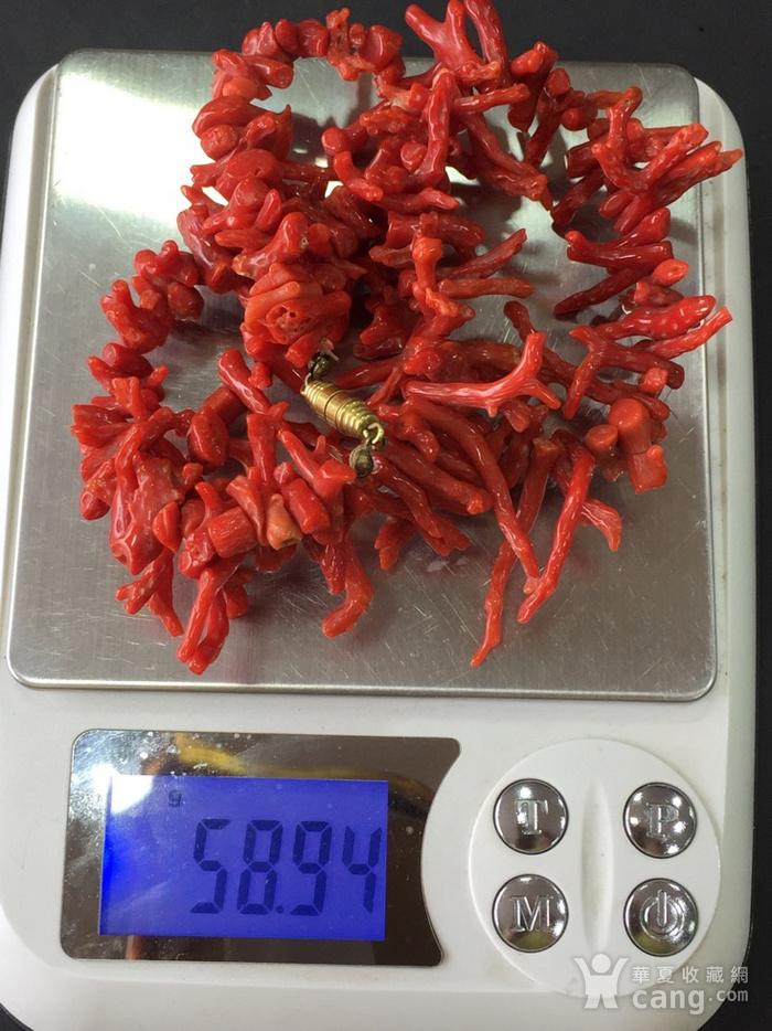 8002欧洲回流意大利随行珊瑚枝项链图8